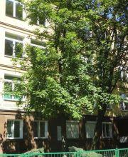 Okna_PCV_szkola
